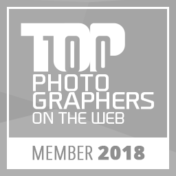 TOP100 photographers on the web